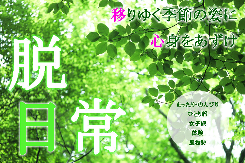 天橋立 オフ旅 ~脱日常~ ほたる ハーブ 体験 お寺 神社 歴史
